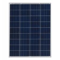 Solar Panel Jarwinn Poly 12V